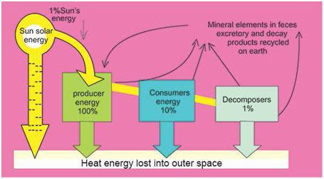 heat-energy