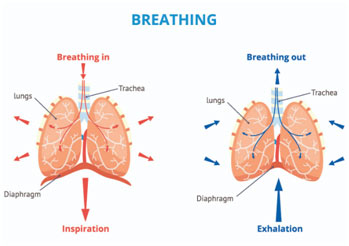 breathing-featured
