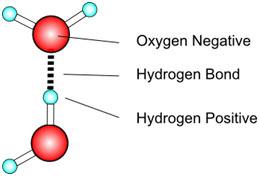 Hydrogen-bond-formation