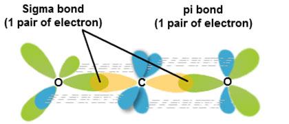 sigma-bond-example