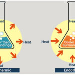 Exothermic and Endothermic Reactions [Definition, Examples, and Differences]