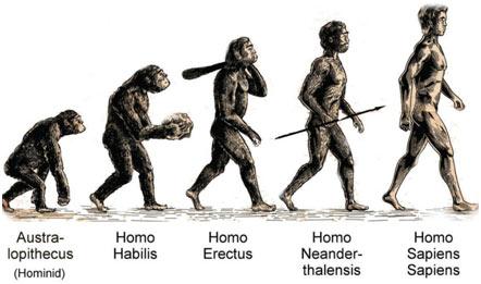 humans-Evolution-Timeline