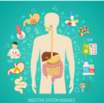 Some Common Diseases Related to Digestive System