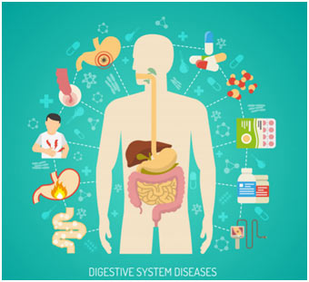 Diseases-Digestive-System