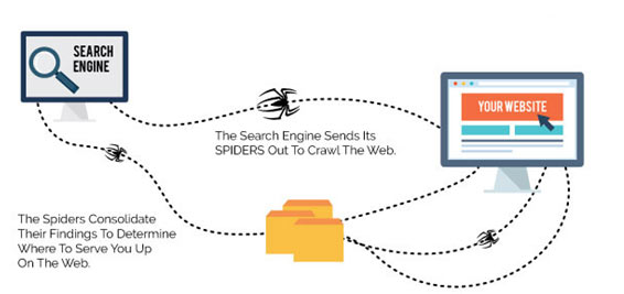 search-engine-working