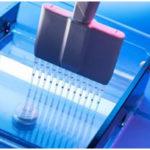 PAGE - Poly Acrylamide Gel Electrophoresis